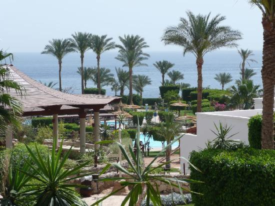Sharm El Sheikh best hotels and resorts